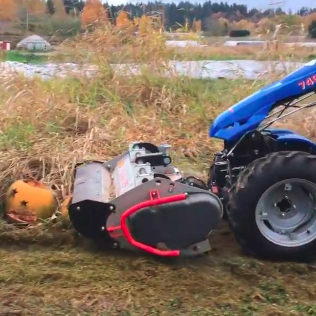 BCS Flail Mower in Operation